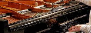Klavierbaumeister Reinhold Pöhlmann , Himmelkron / Bayreuth